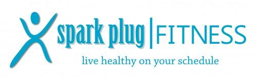 Spark Plug Fitnesss